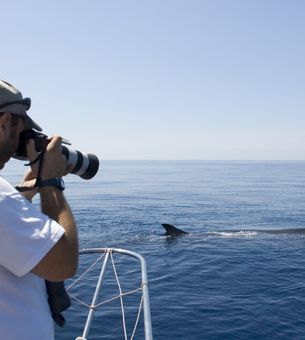 photodune-244538-tourists-watching-a-whale-view-from-back-s